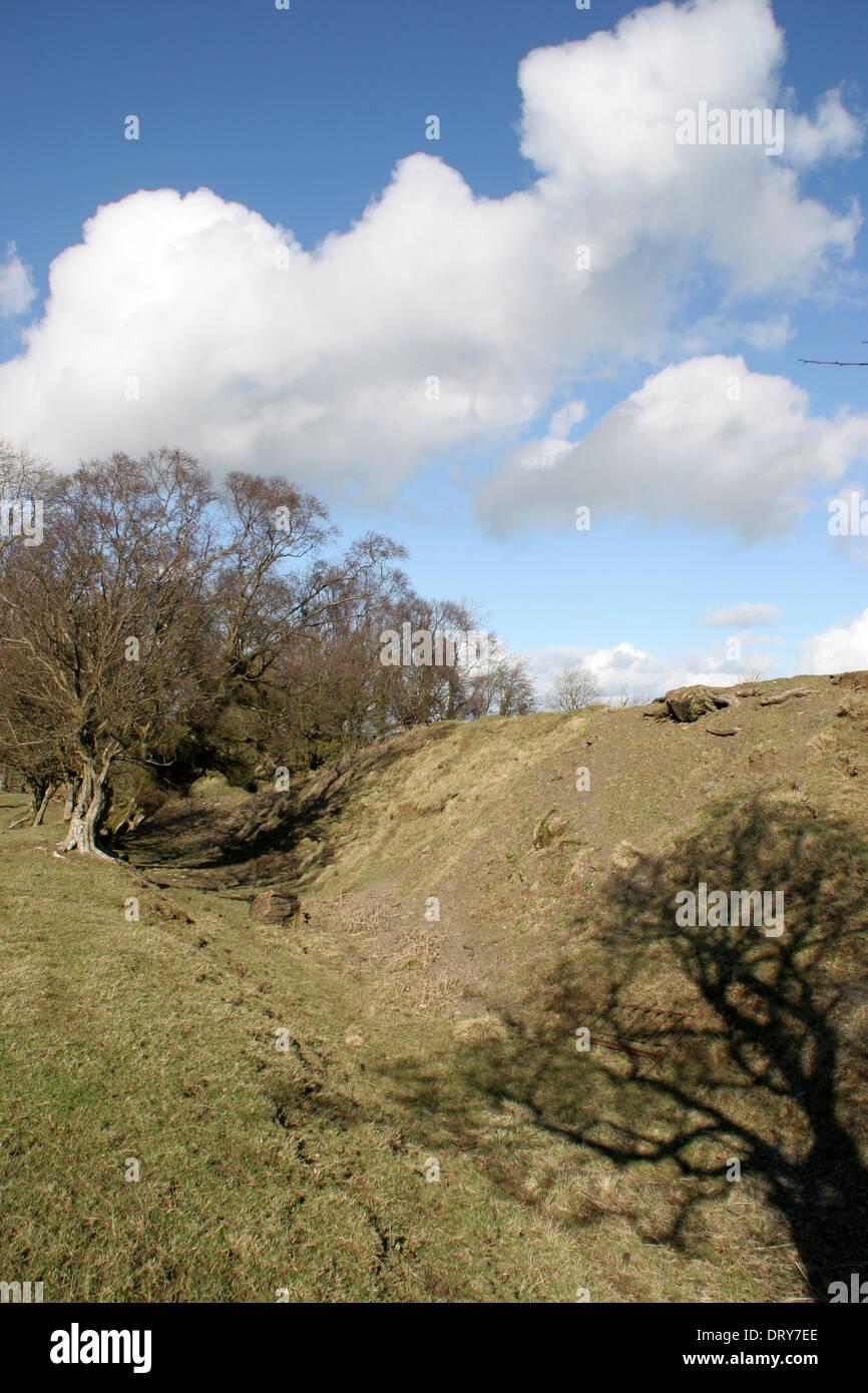 Offa's Dyke near Kerry Ridgeway Shropshire England UK Stock Photo