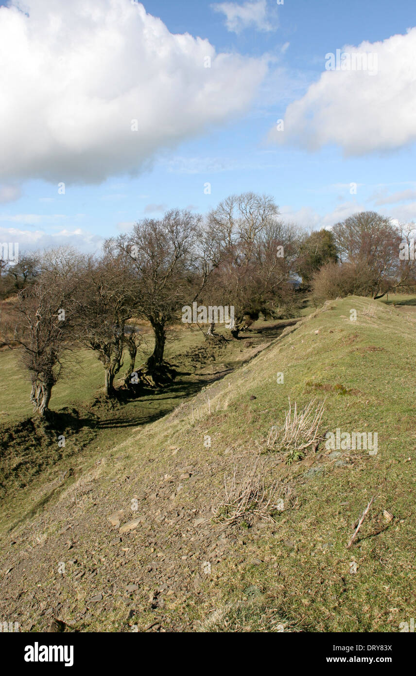 Offa's Dyke near Kerry Ridgeway Shropshire England UK Stock Photo