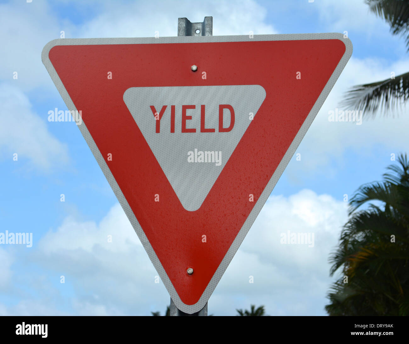 The Yield Sign - Stock Image