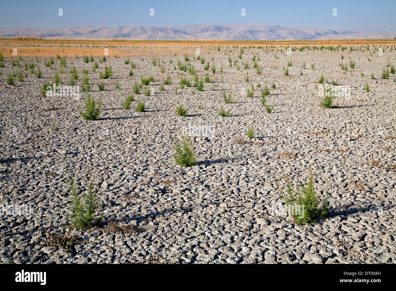 Drying lake bed in Central Anatolia Turkey - Stock Image