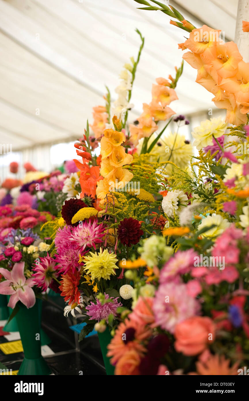 Entries in the One Vase of Mixed Cut Flowers class in the horticultural competition at an country show make a colourful display - Stock Image