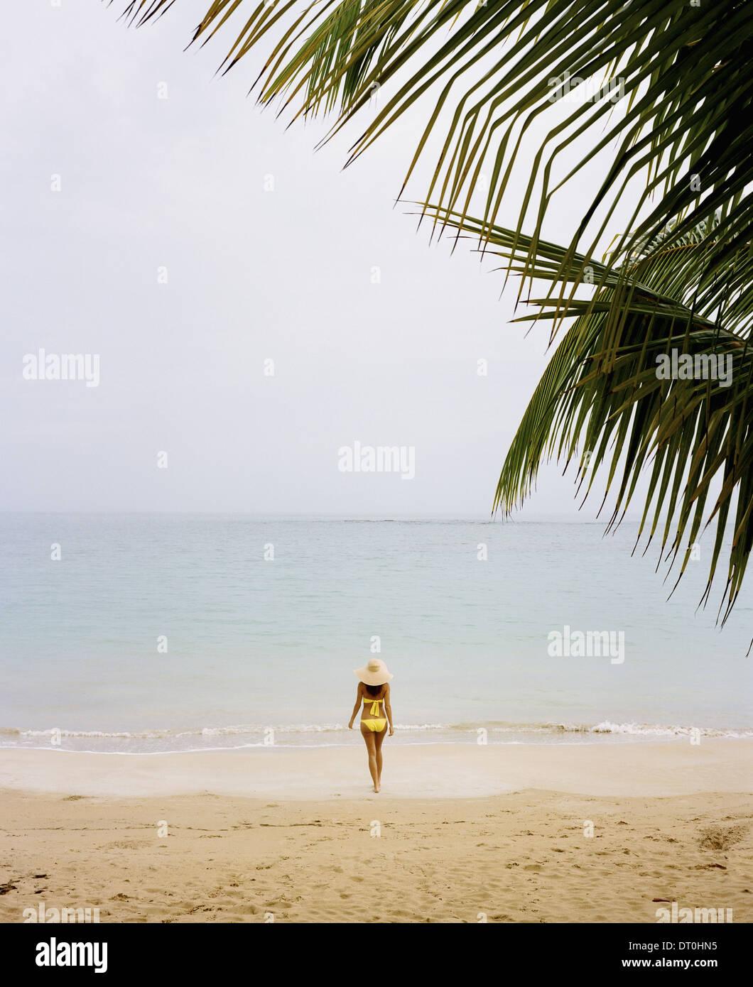 Samana Peninsula Dominican Republic. young woman wearing yellow bikini on beach - Stock Image