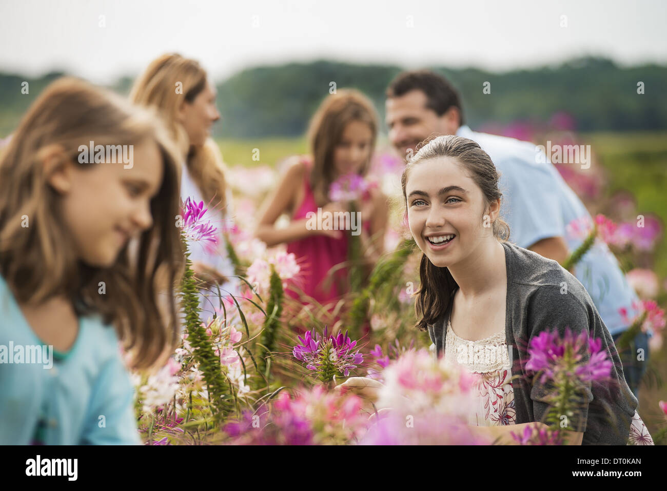 Woodstock New York USA group of people among flowers organic Flower Farm - Stock Image