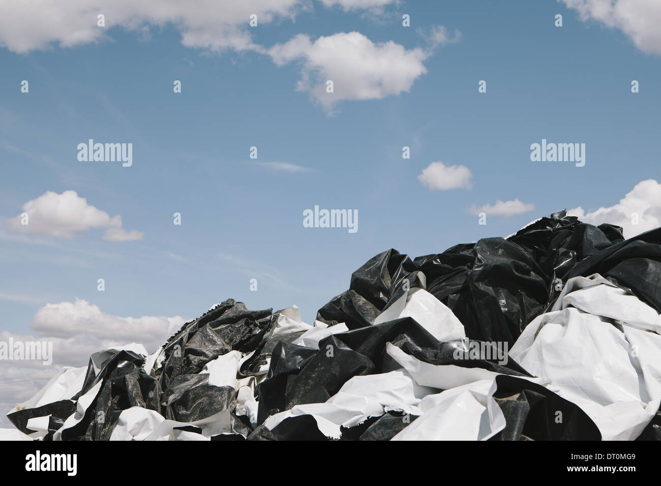 Washington USA Black and white discarded plastic bags bales hay - Stock Image