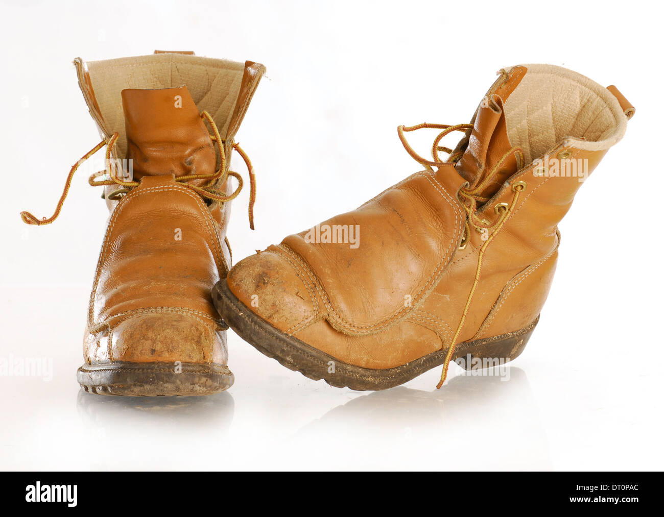 work boots with reflection isolated on white background - Stock Image