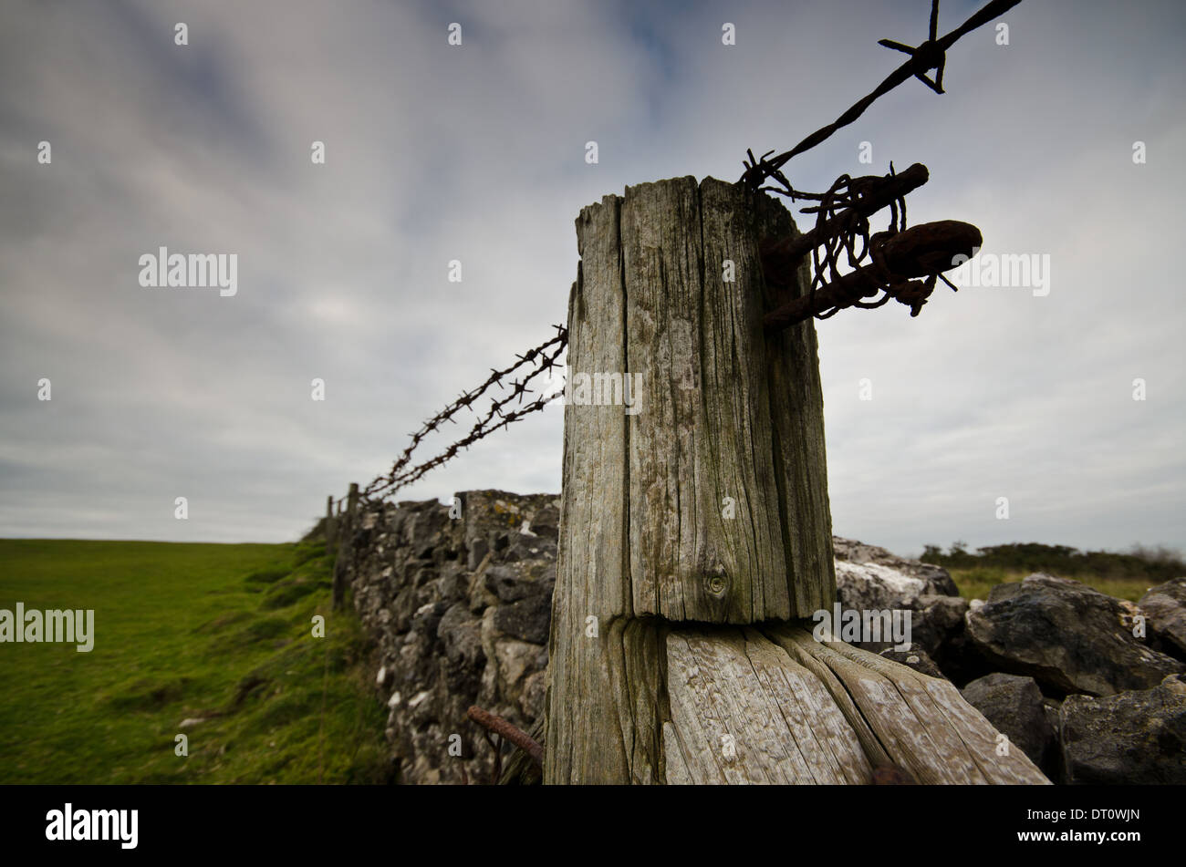 Barbed Wire Fence and Fence Post - Stock Image