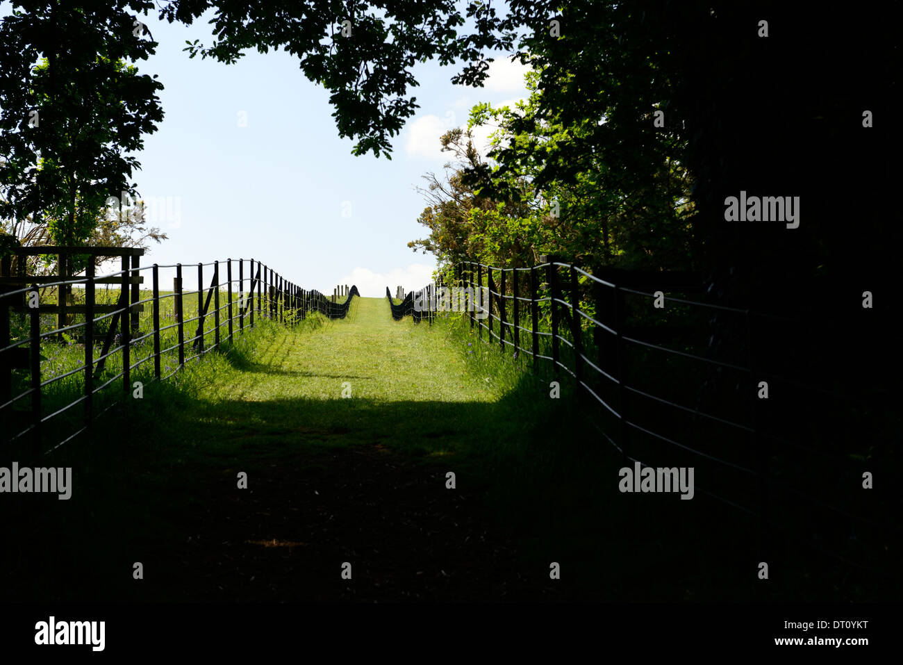 fenced fence walk trail path look looking view into sunlight from dark wood uphill up hill out of darkness - Stock Image