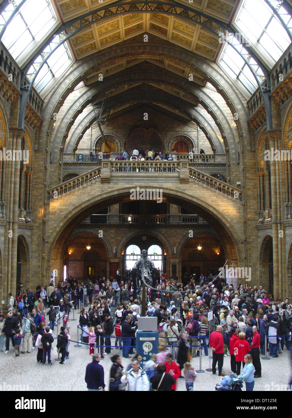 Visitors at the main hall of Natural History Museum, London England UK - Stock Image