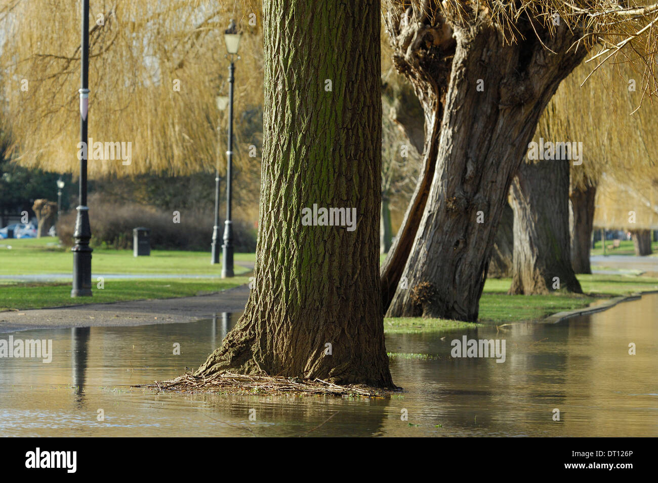 Rising floodwater by River Great Ouse, Bedford, UK Stock Photo