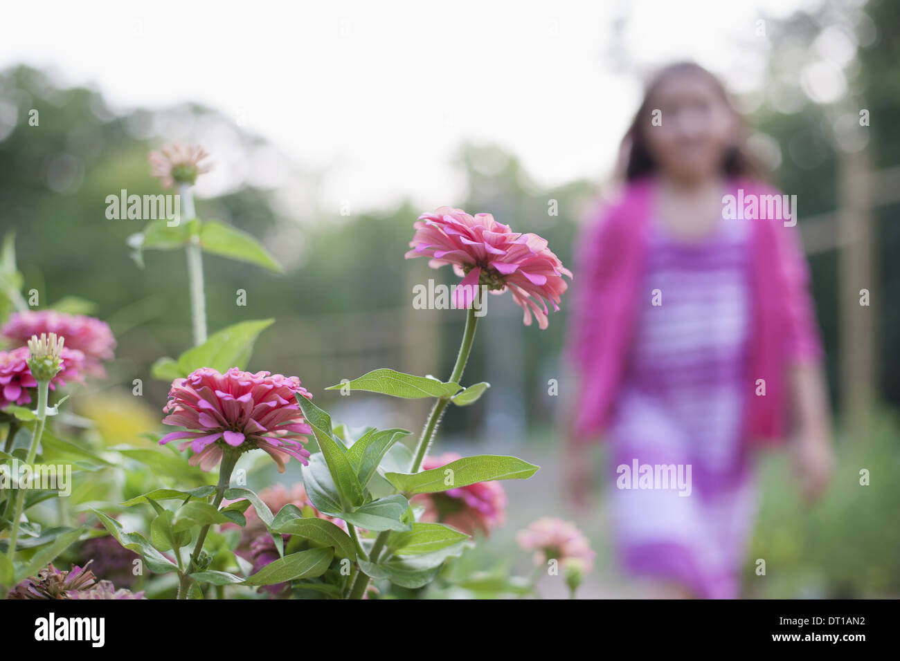 Woodstock New York USA young girl pink dress walking past bed of flowers - Stock Image