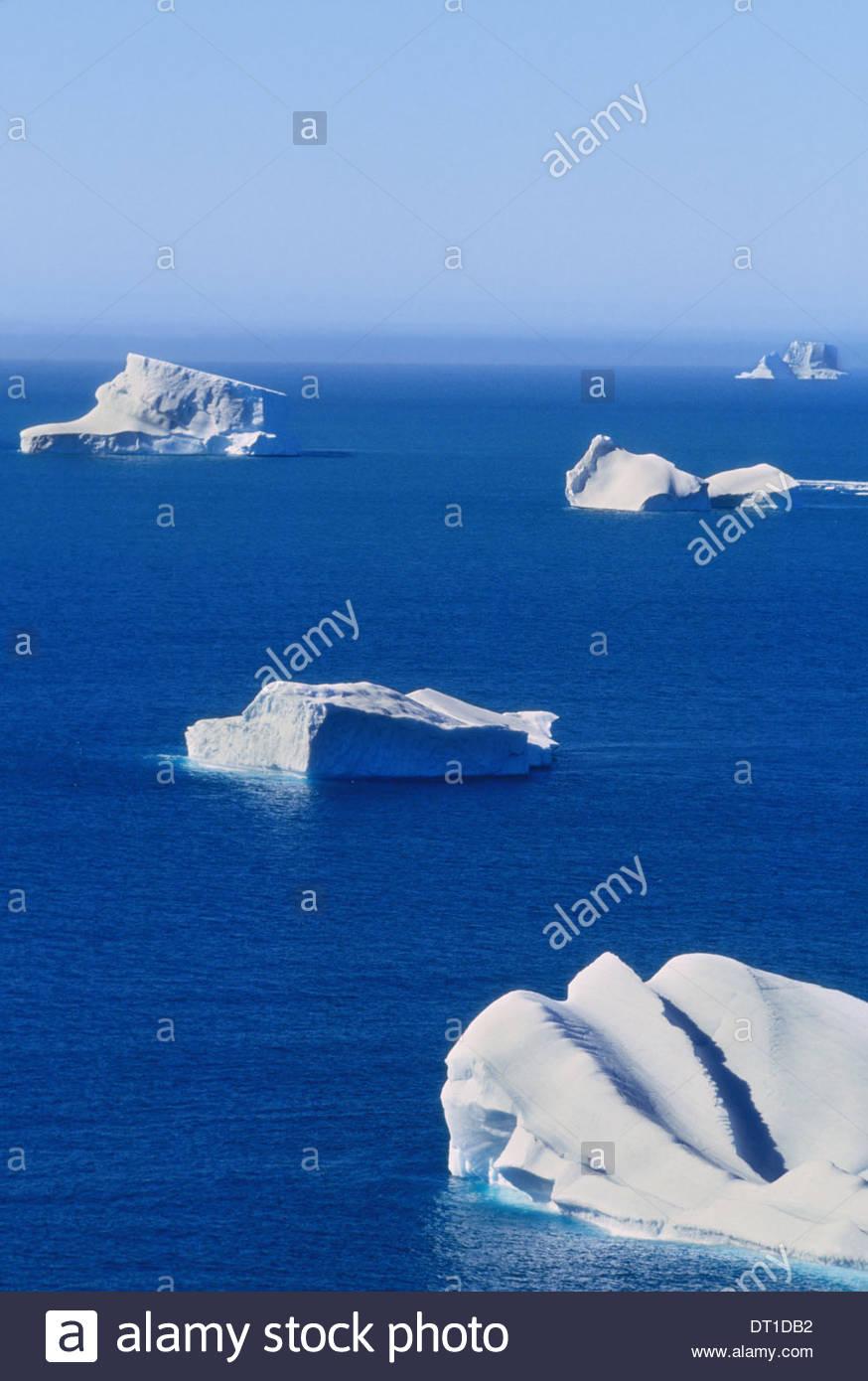 South Georgia Island Falkland Islands Icebergs floating on calm blue seas South Georgia Stock Photo