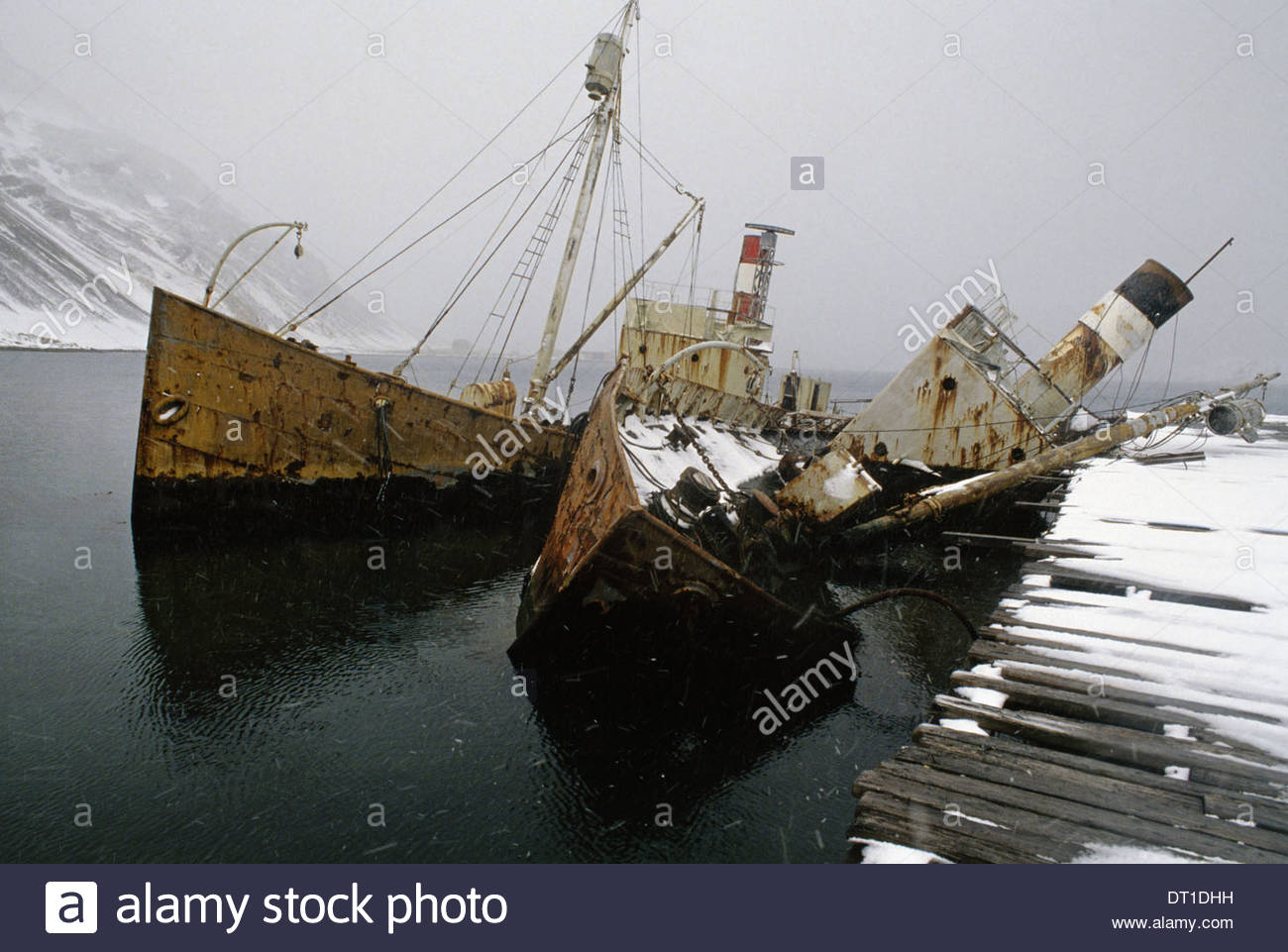 Grytviken South Georgia Island Antarctica Whale catcher boats sunk at moorings at Grytviken - Stock Image