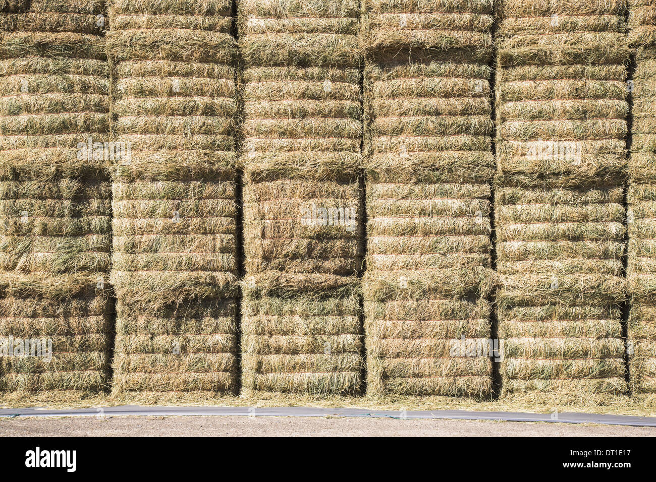 Washington State USA hay bales stored in layers to keep fodder dry - Stock Image