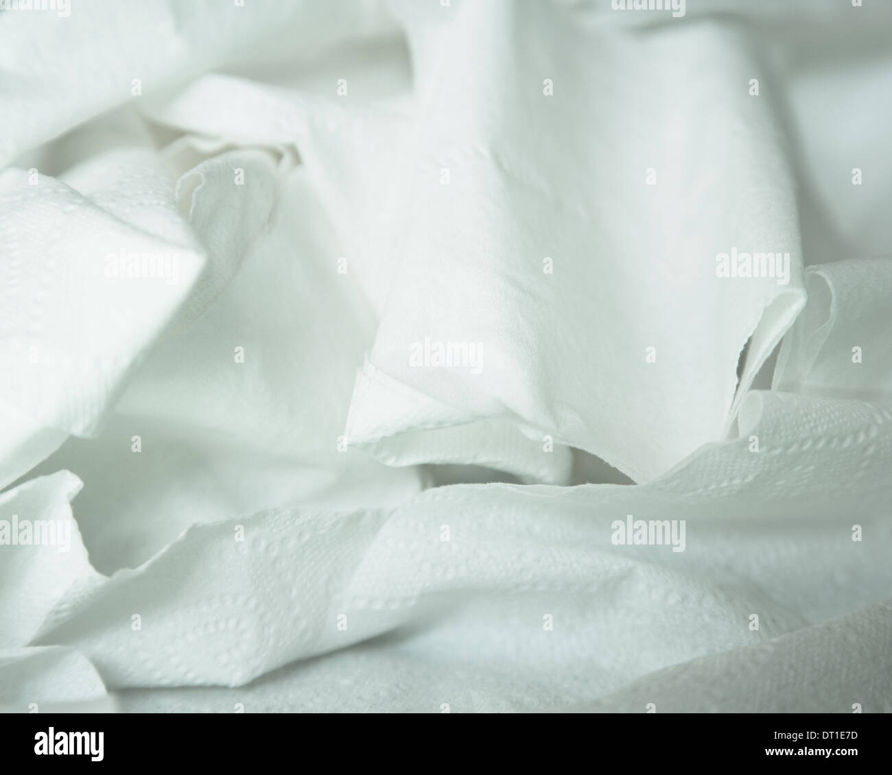 roll of toilet paper unwound and crumpled - Stock Image