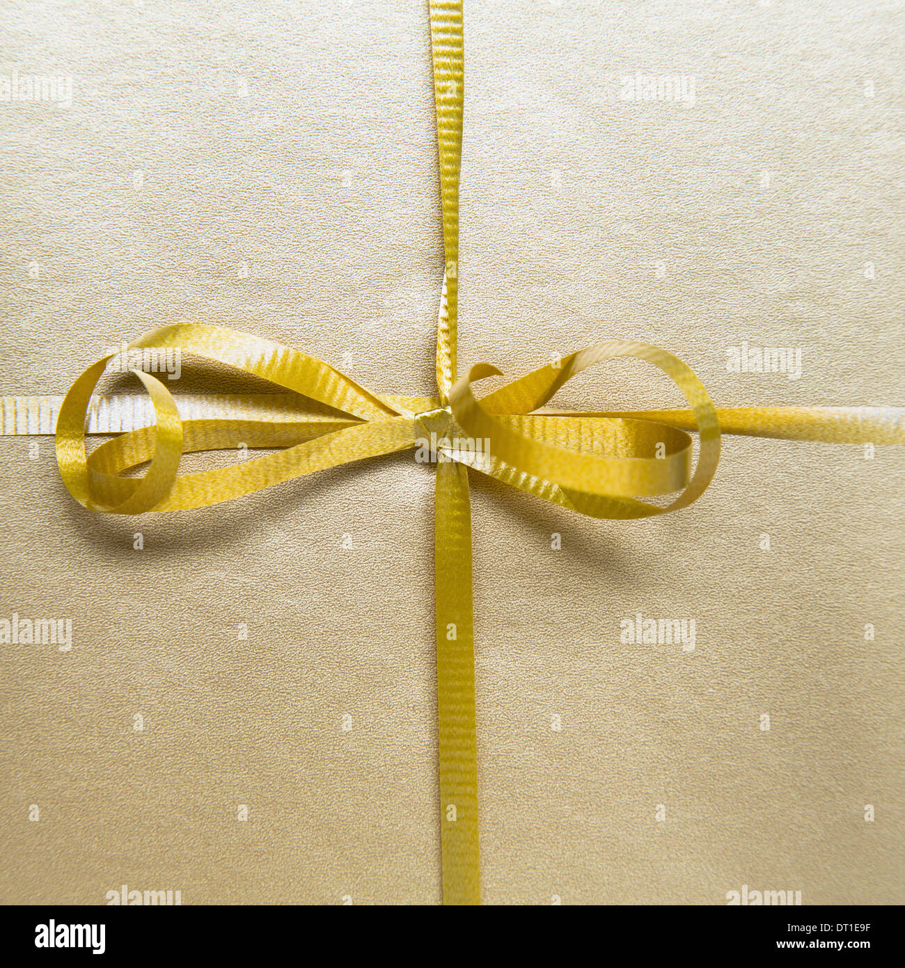 tied bow and gold ribbon from wrapped gift - Stock Image