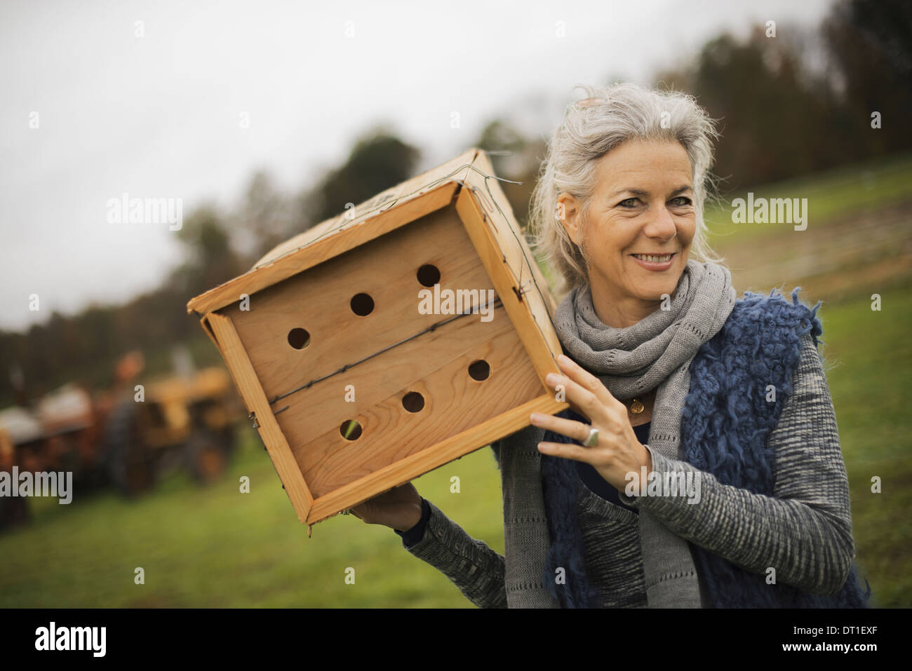 Organic Farmer at Work A woman holding a bug box a wooden box with holes for insects to nest in - Stock Image