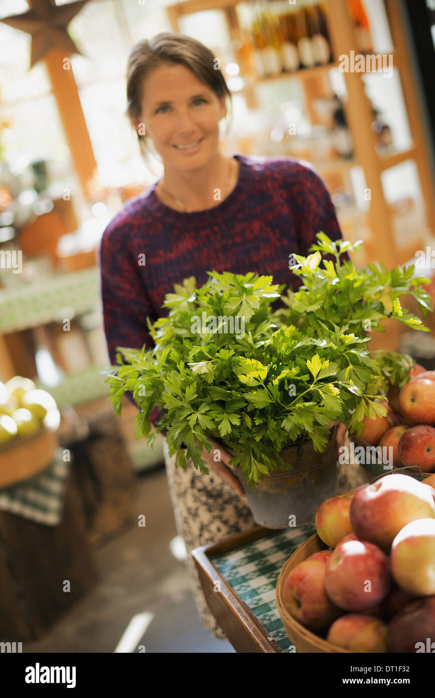 Organic Farmer at Work A woman working on farm stand with a display of fresh produce Green plants and bowls of apples - Stock Image
