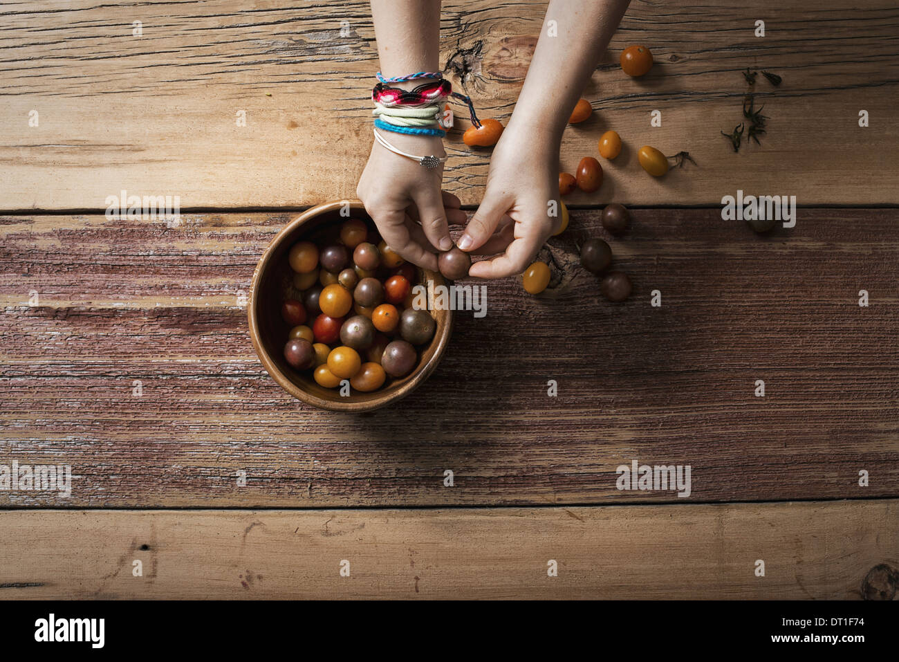 A round bowl with small tomatoes of various colours and a person sorting and picking over them A wooden tabletop - Stock Image