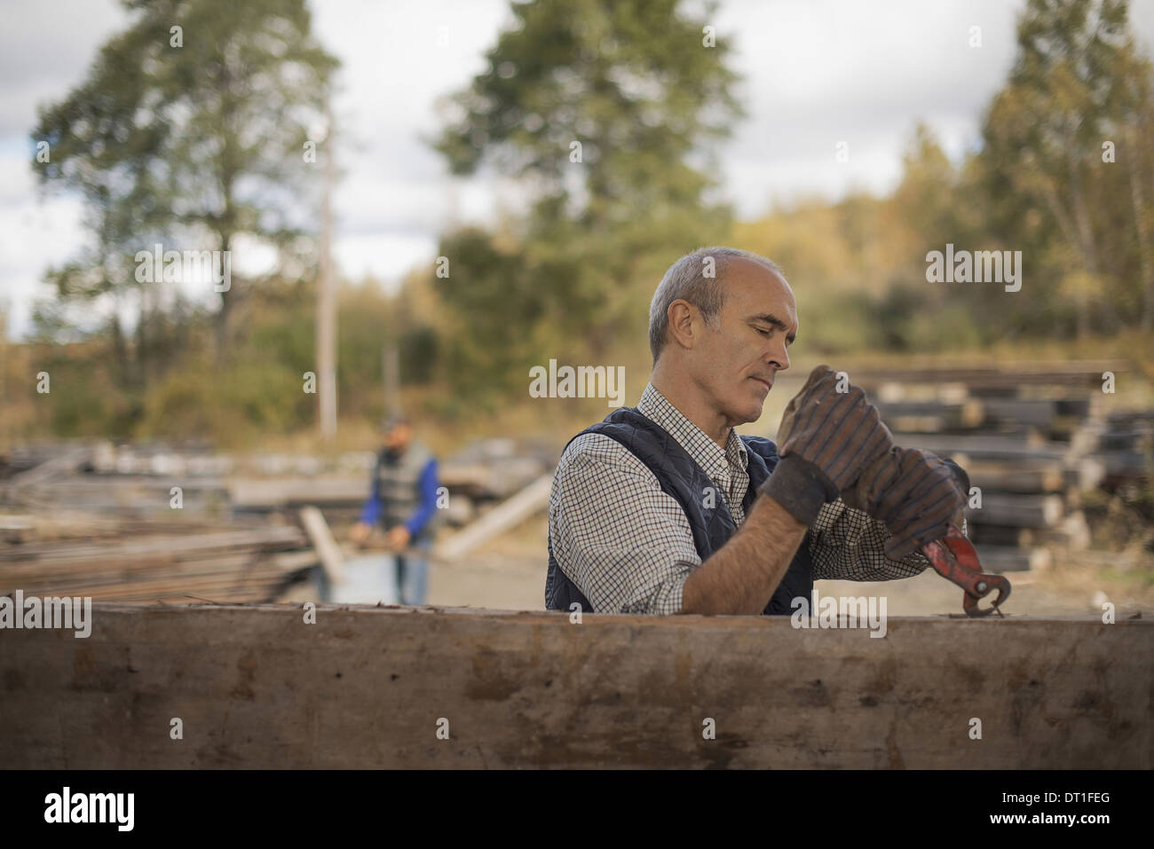Two men working in a reclaimed timber yard One using a tool to remove metals from a reclaimed piece of timber - Stock Image
