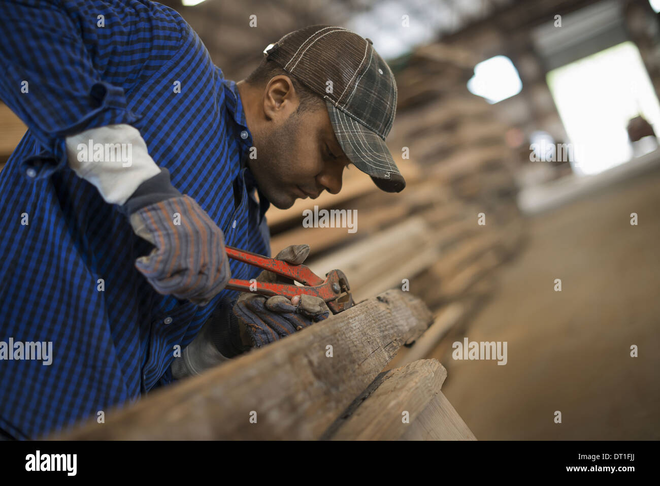 A man working in a reclaimed timber yard Using a tool to remove metals from a reclaimed piece of timber Workshop - Stock Image