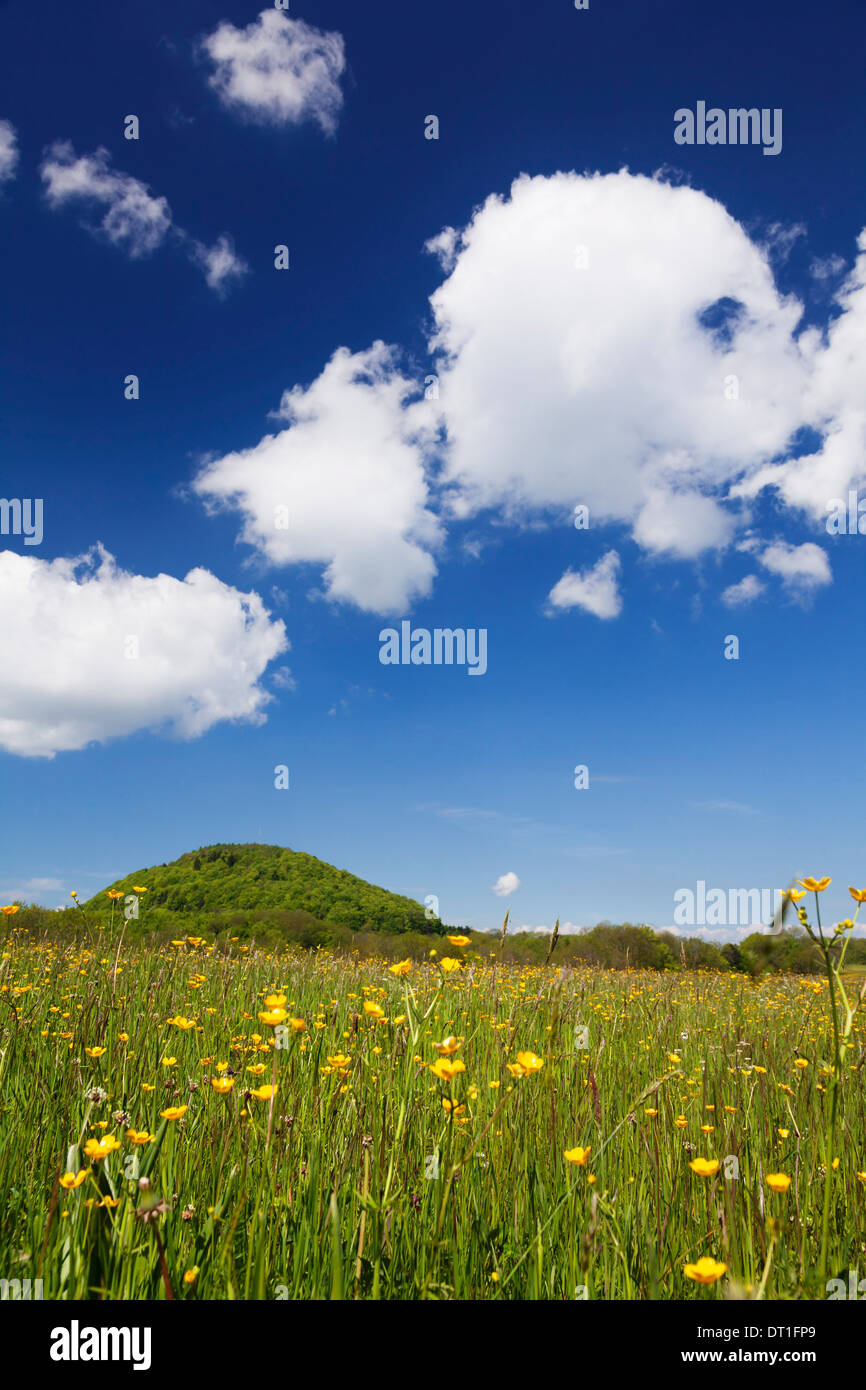 Rossberg mountain and meadow in spring, Swabian Alb, Baden Wurttemberg, Germany, Europe - Stock Image