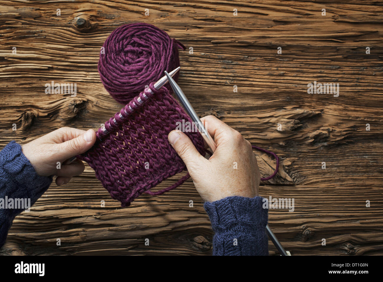 A woman holding two knitting needles and a piece of knitting in purple wool - Stock Image