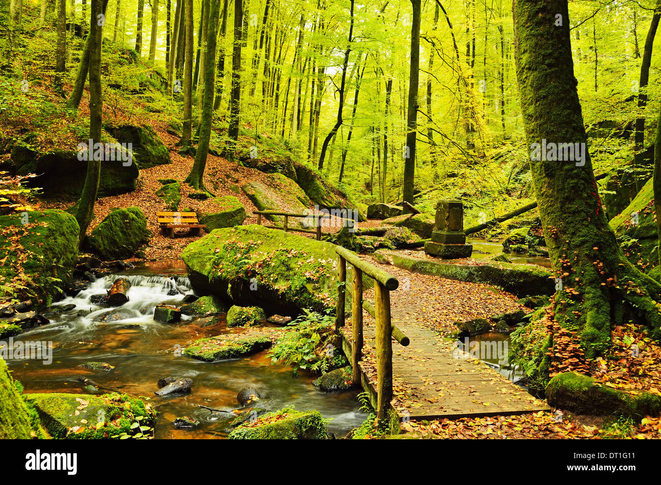 Karlstal gorge, near Trippstadt, Palatinate Forest, Rhineland-Palatinate, Germany, Europe - Stock Image