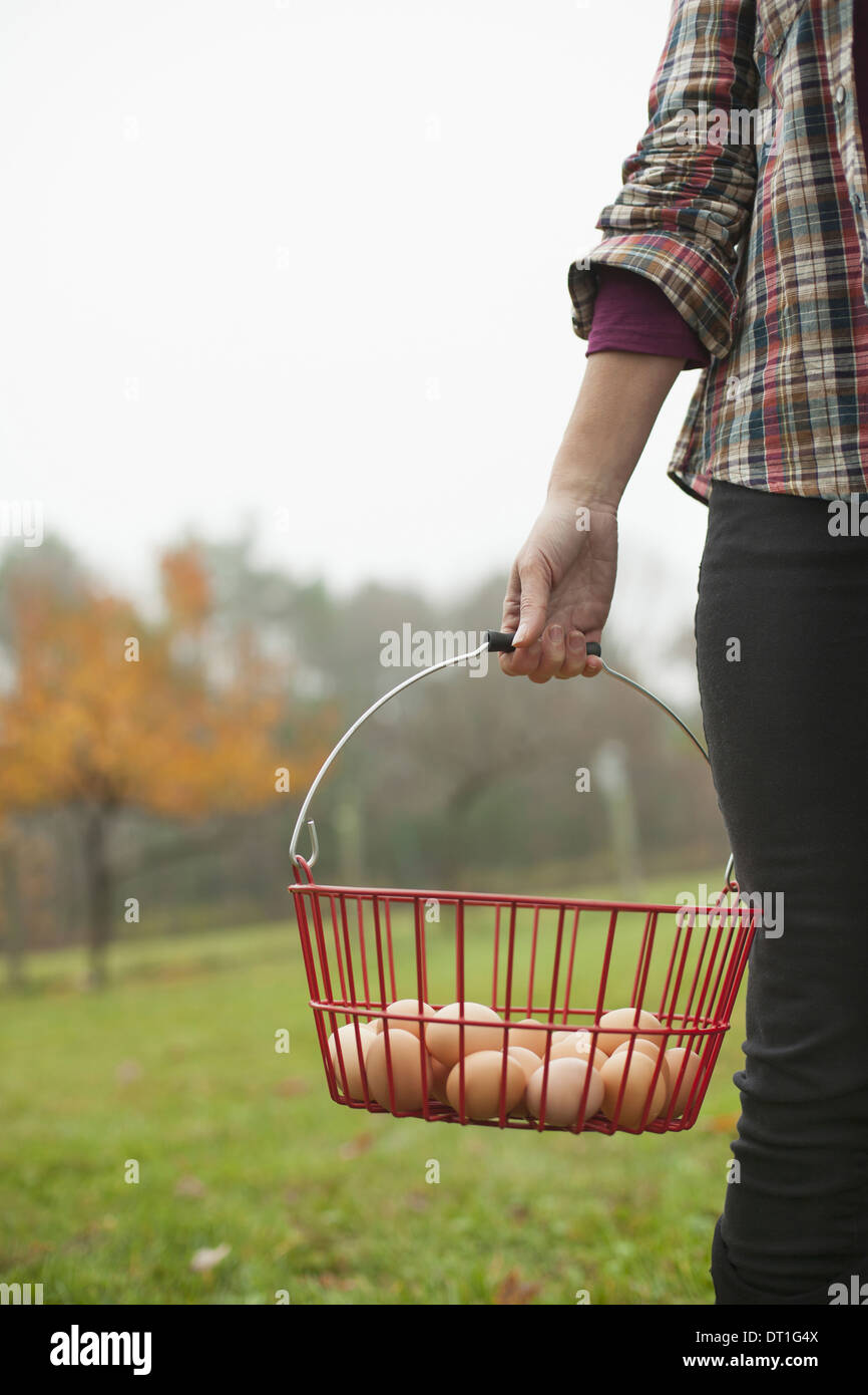 Organic farm A woman carrying a clutch of freshly laid hen's eggs in a wire basket Stock Photo