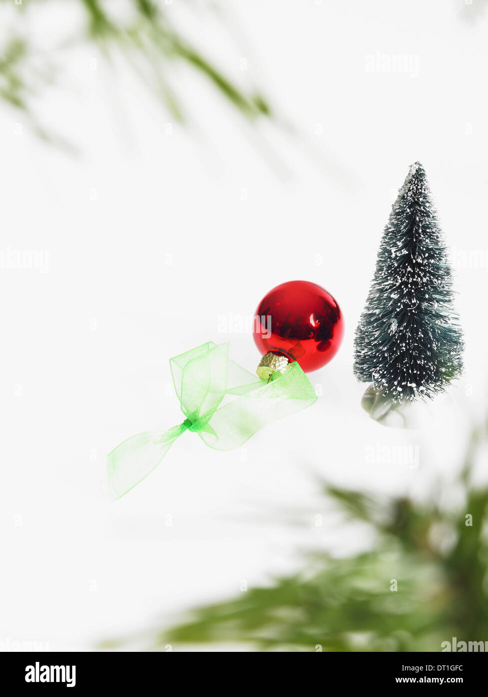 Still life Green leaf foliage and decorations A pine tree branch with green needles Christmas decorations A red ornament - Stock Image