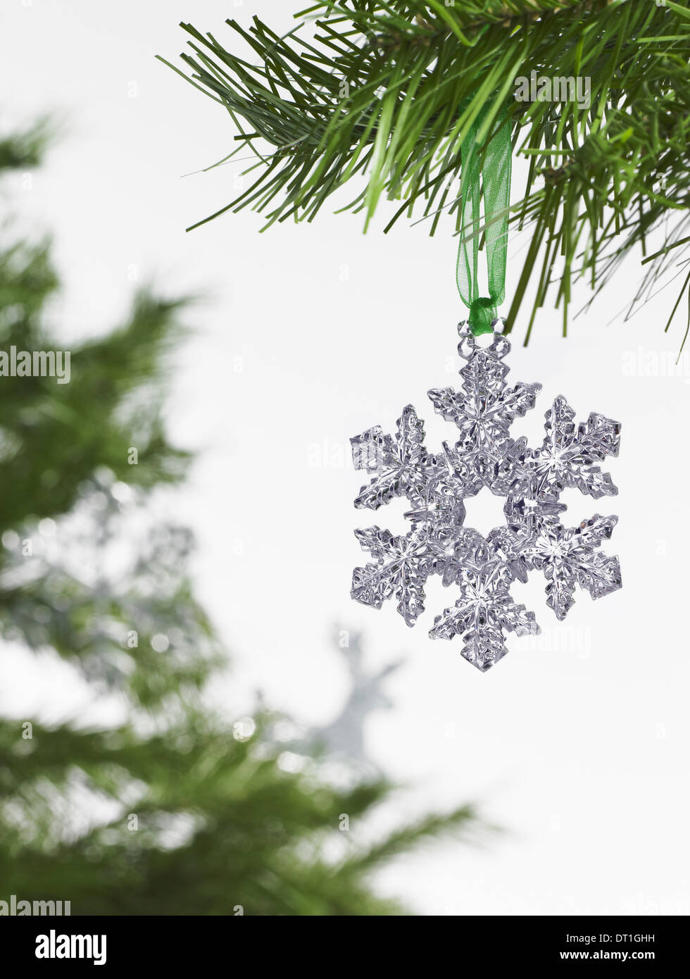 Green leaf foliage and decorations A pine tree branch with green needles Christmas decorations A silver icicle shape - Stock Image
