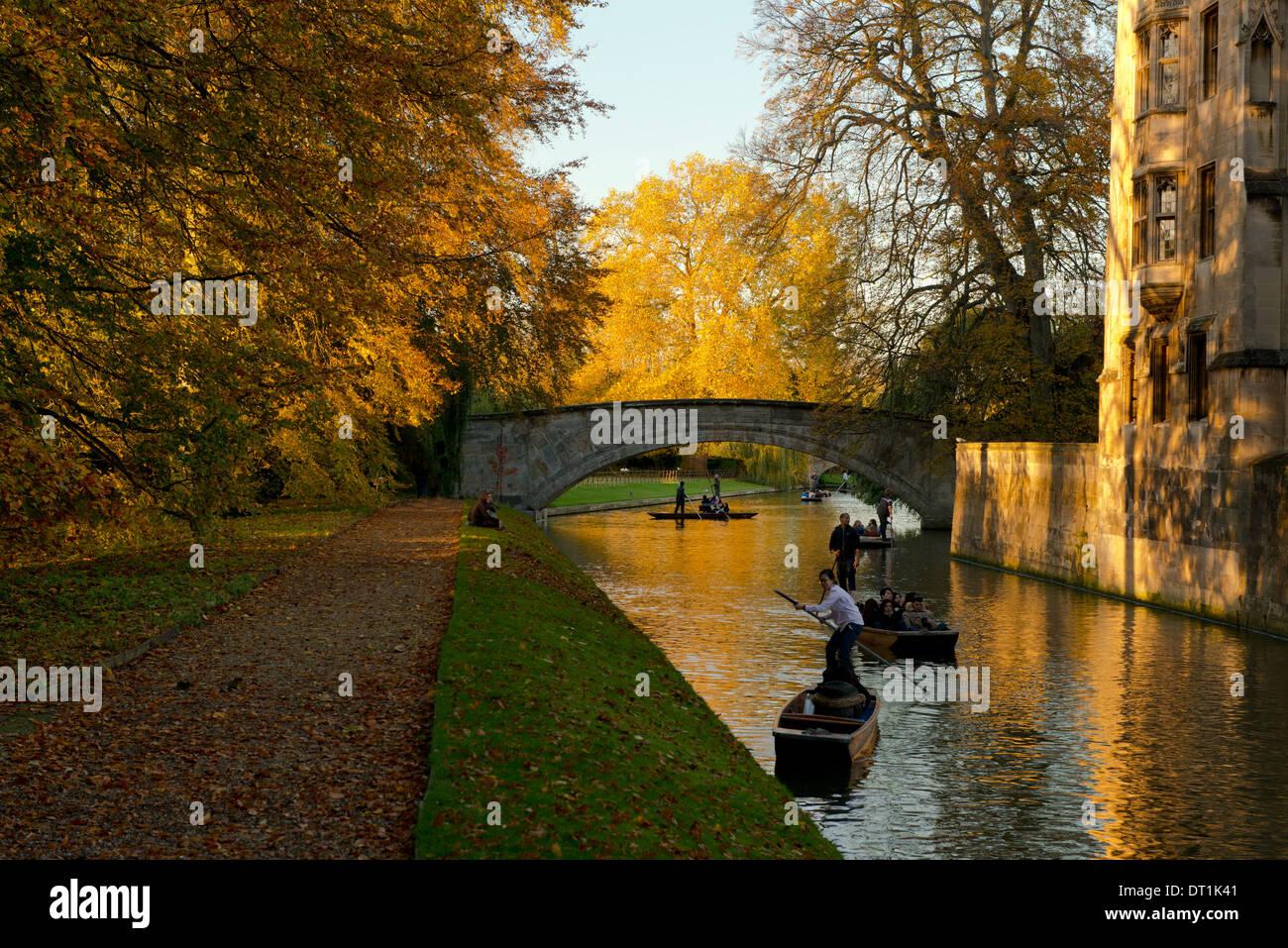 Punts on the Cam on an autumn day, Cambridge, Cambridgeshire, England, United Kingdom, Europe - Stock Image