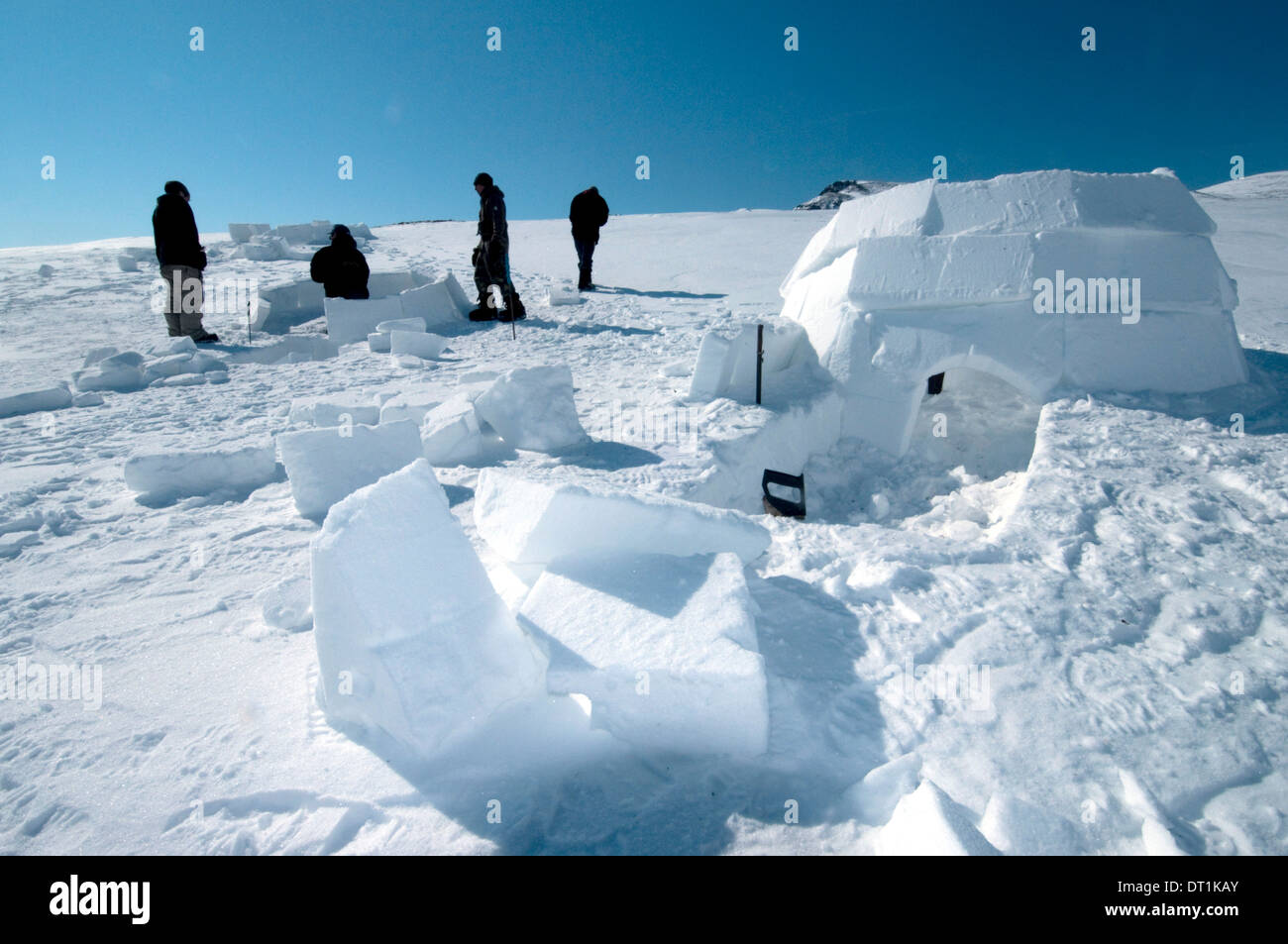 Inuit cutting snow blocks using a saw and a knife to make an igloo, Nunavut, Canada, North America - Stock Image