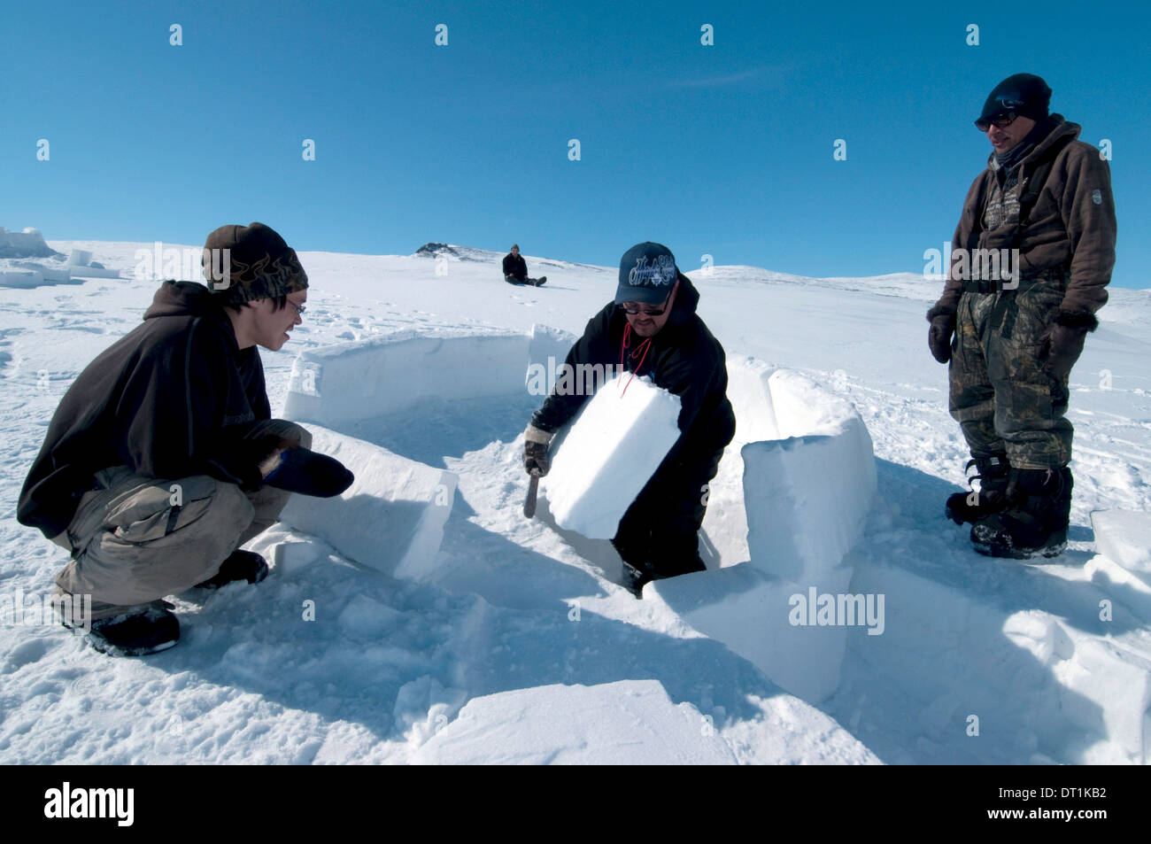 Inuit elder teaches igloo building to young men from the community of Pond Inlet, Nunavut, Canada, North America - Stock Image