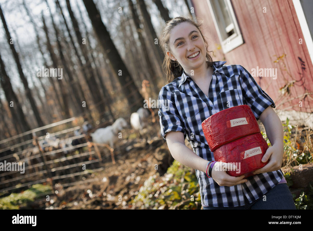 A young woman standing outside a dairy farm building holding two blocks of cheese - Stock Image