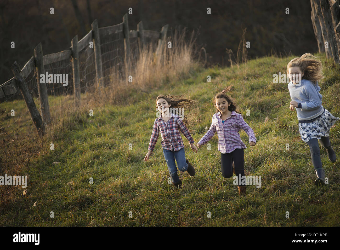 Three children running down a hill on an organic farm - Stock Image