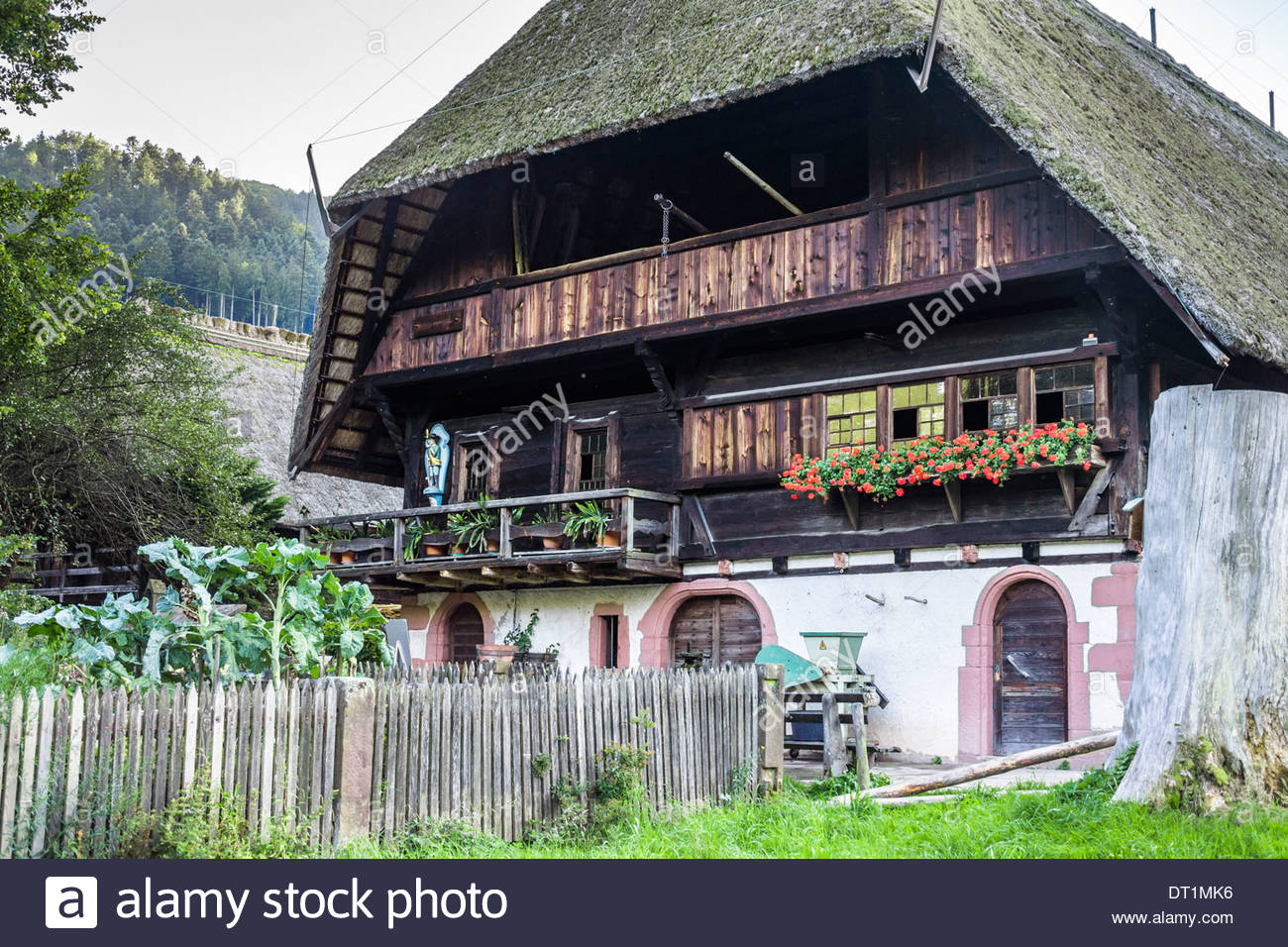 historic black forest farmhouse at the _black forest open air museum_, gutach, black forest, baden-wuerttemberg, germany - Stock Image