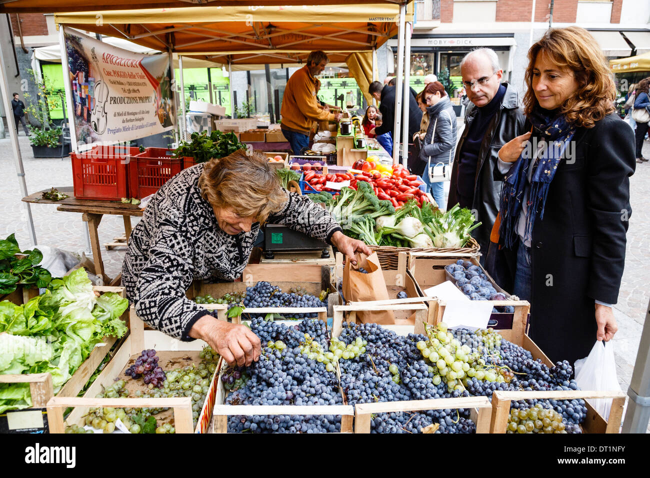 Fruit and vegetable stall at a market in Alba, Langhe, Cueno, Piedmont, Italy, Europe - Stock Image