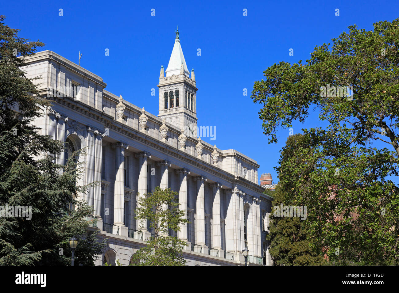 University of California, Berkeley, California, United States of America, North America - Stock Image