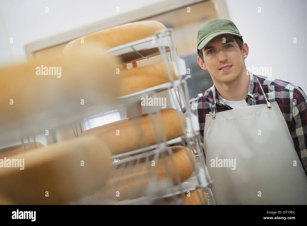 organic dairy farm with a mixed herd of cows and goats Dairy building with large wheels of cheese maturing Trays of produce - Stock Image