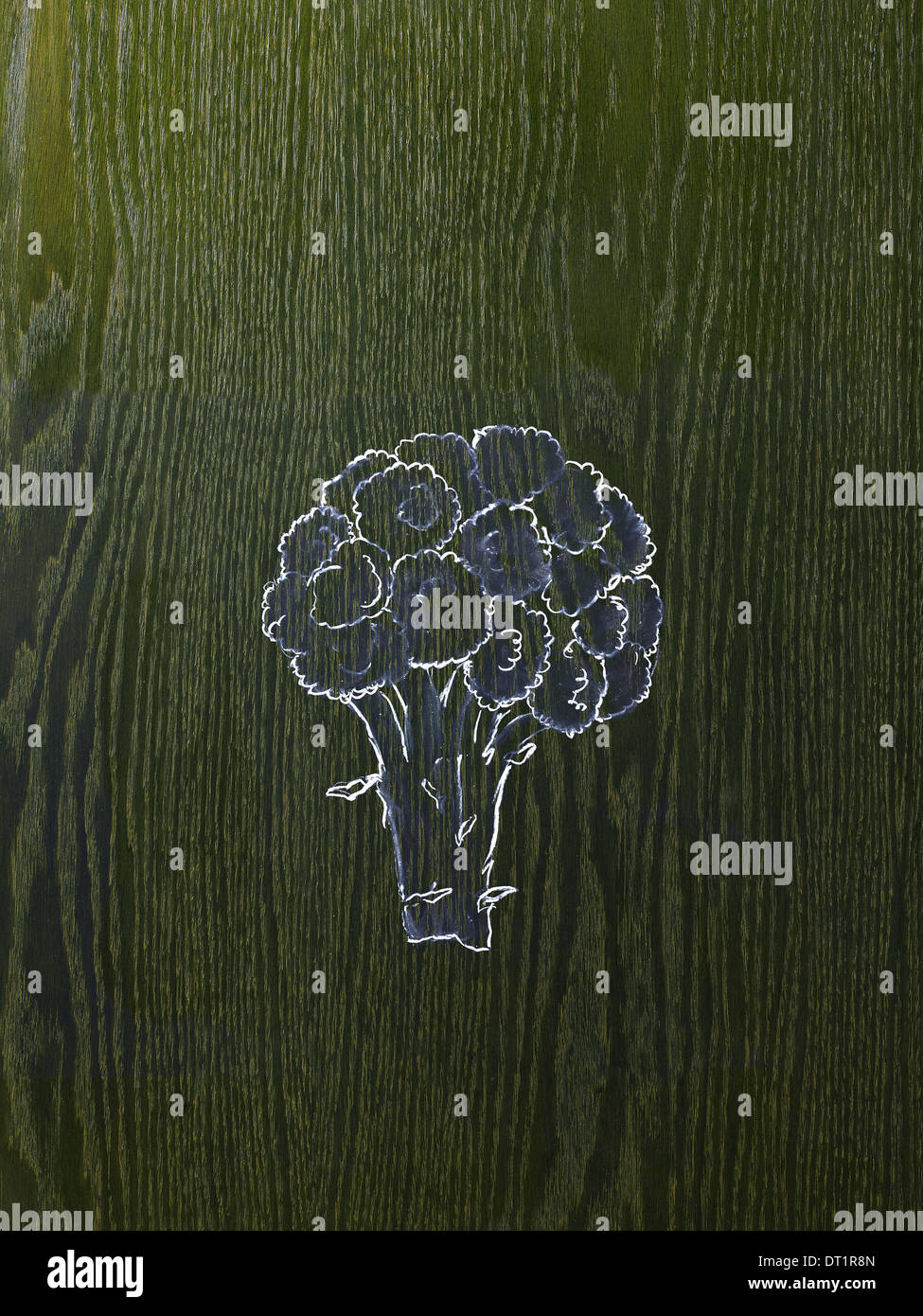 A line drawing image on a natural wood grain background A head of broccoli florets and stem - Stock Image