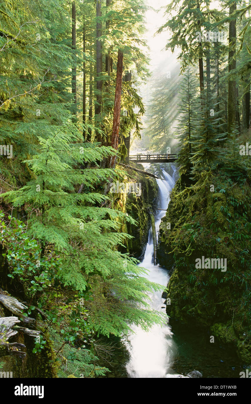 Sol Duc Falls are in the forest of Olympic National Park Washington State - Stock Image