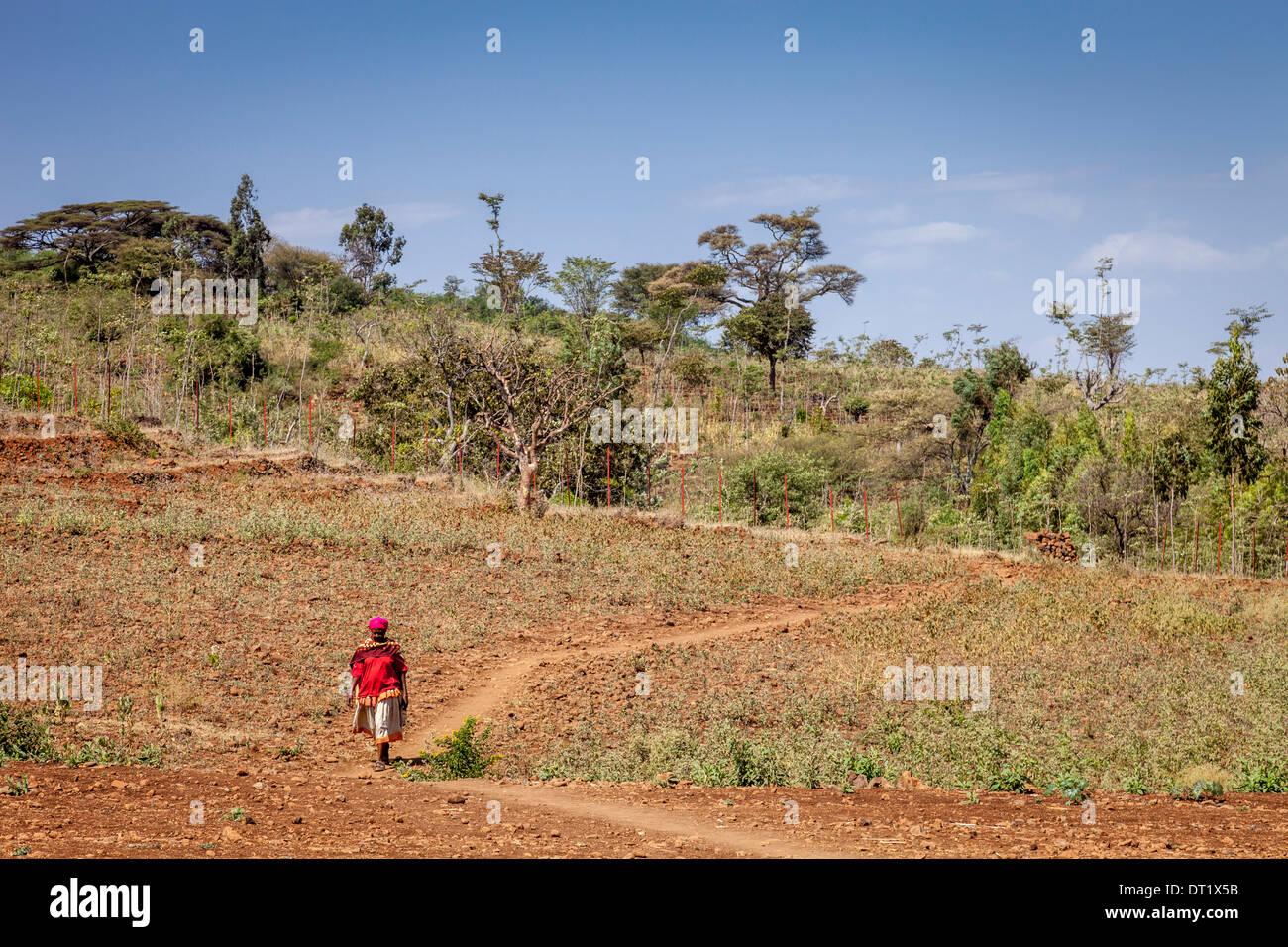 The Konso Landscape, Konso Region, Ethiopia - Stock Image