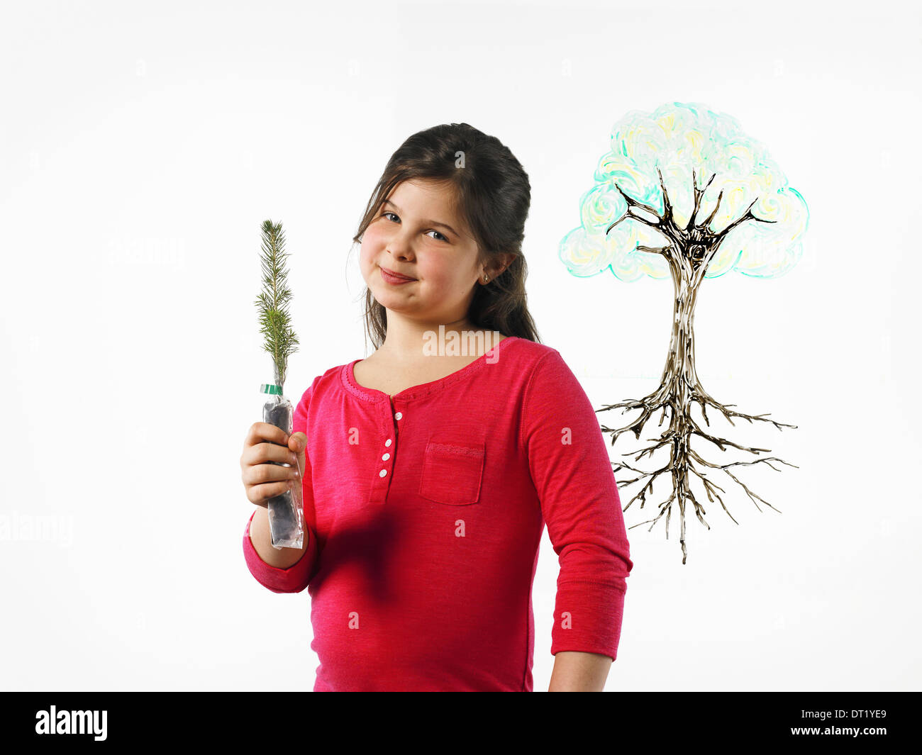 A young girl holding a small evergreen seedling An illustration of a plant with roots drawn on a clear surface - Stock Image