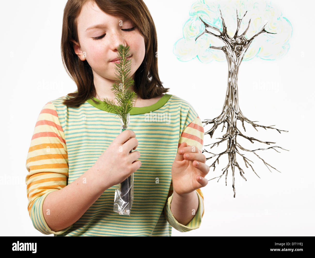 A young girl holding a small evergreen seedling to her nose and smelling it plant with roots on a clear see-through - Stock Image