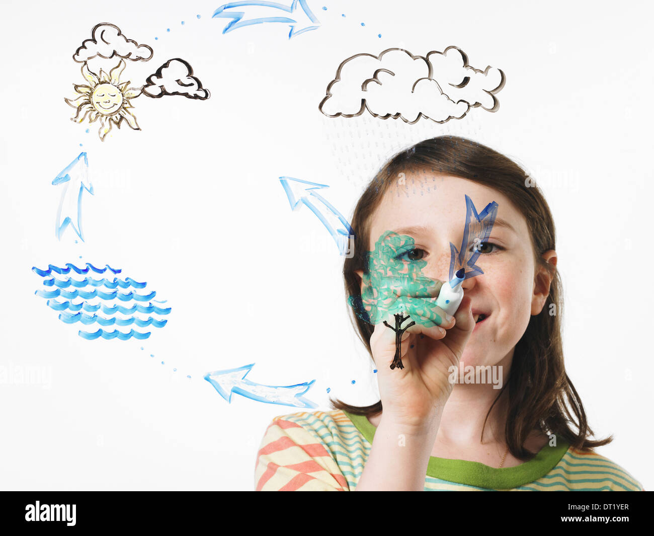 A young girl drawing the water evaporation cycle on a clear see through surface with a marker pen - Stock Image