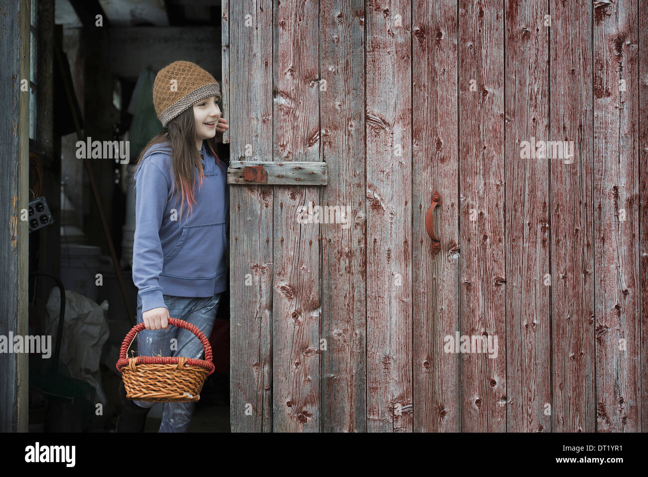 An organic farm in upstate New York in winter A girl in a barn doorway with a basket - Stock Image