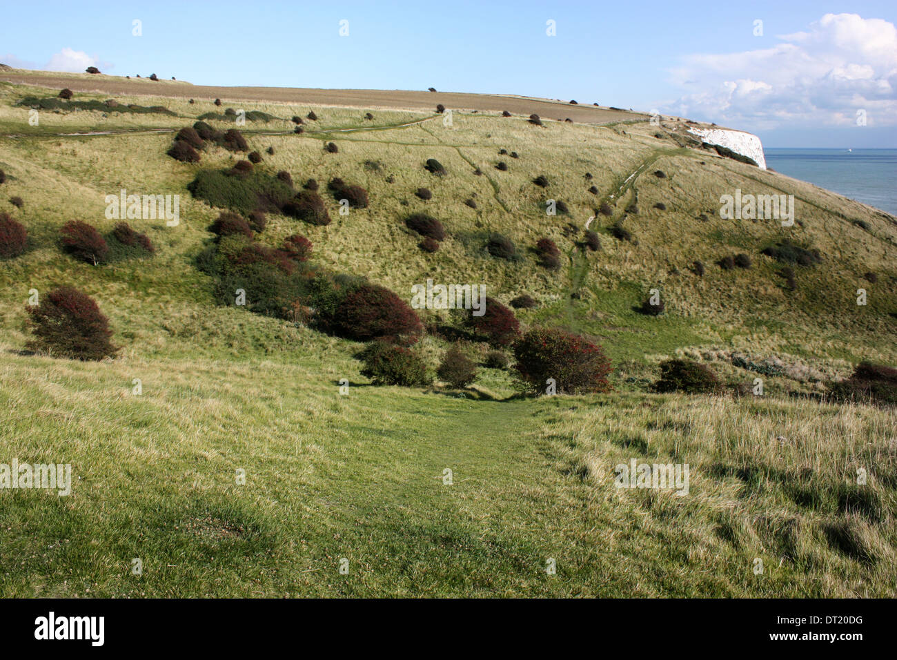 a view of the hills and  meadows along the top of the white cliffs - Stock Image