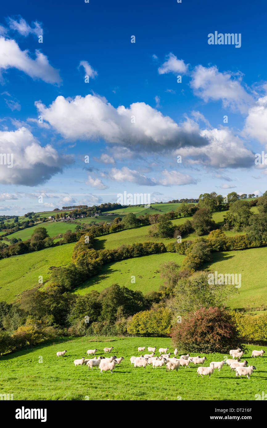 The English Countryside - Stock Image