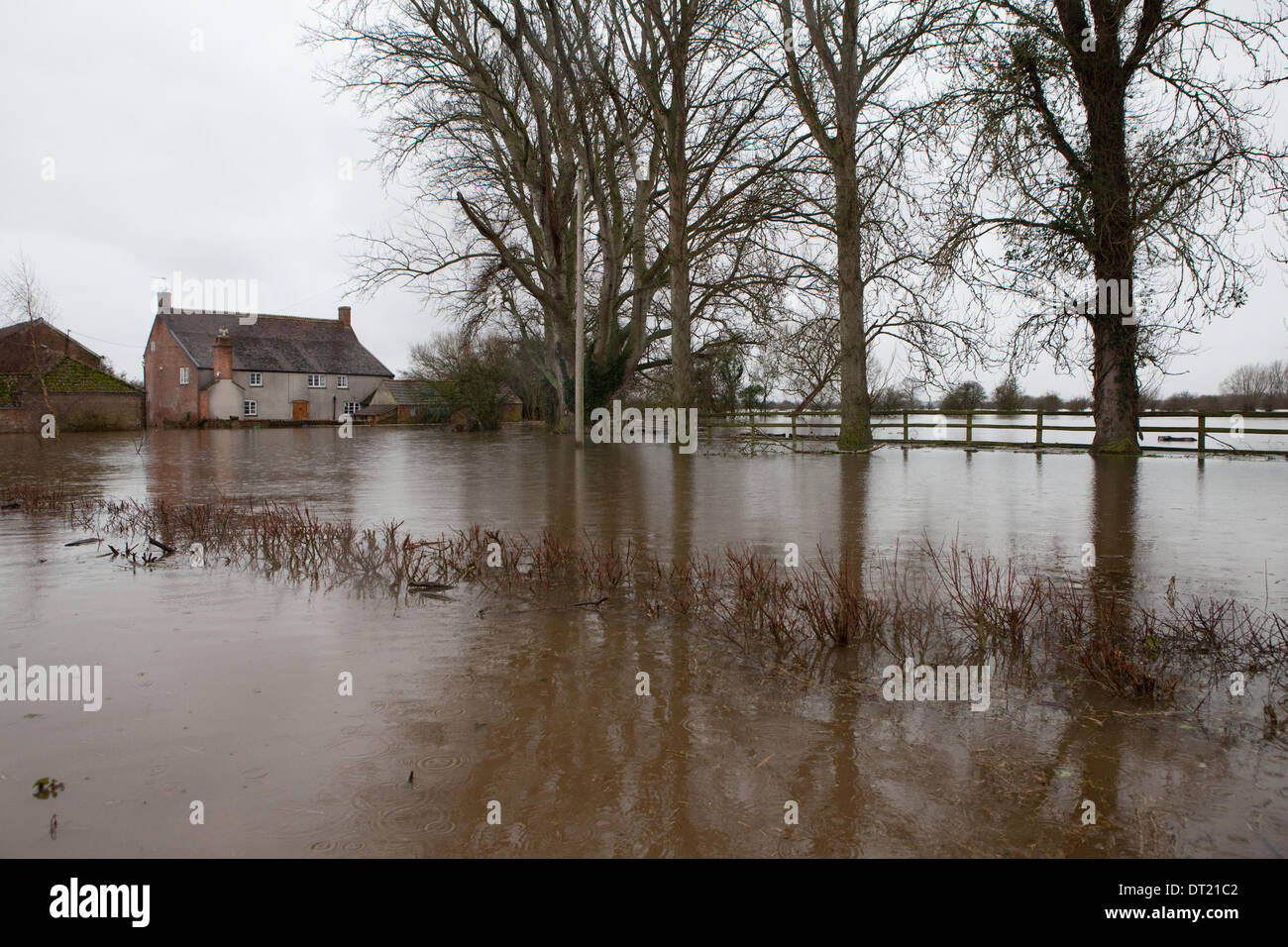 6th February 2014. The evacuation of West Yeo Farm in Moorlands. Local farmers help James Winslade move his cattle to higher ground as his land in submerged in flood water. This house belongs to his parents and is 200 years old. It stands on a site which has been built on since the doomsday book. Credit:  Emma Stoner/Alamy Live News - Stock Image