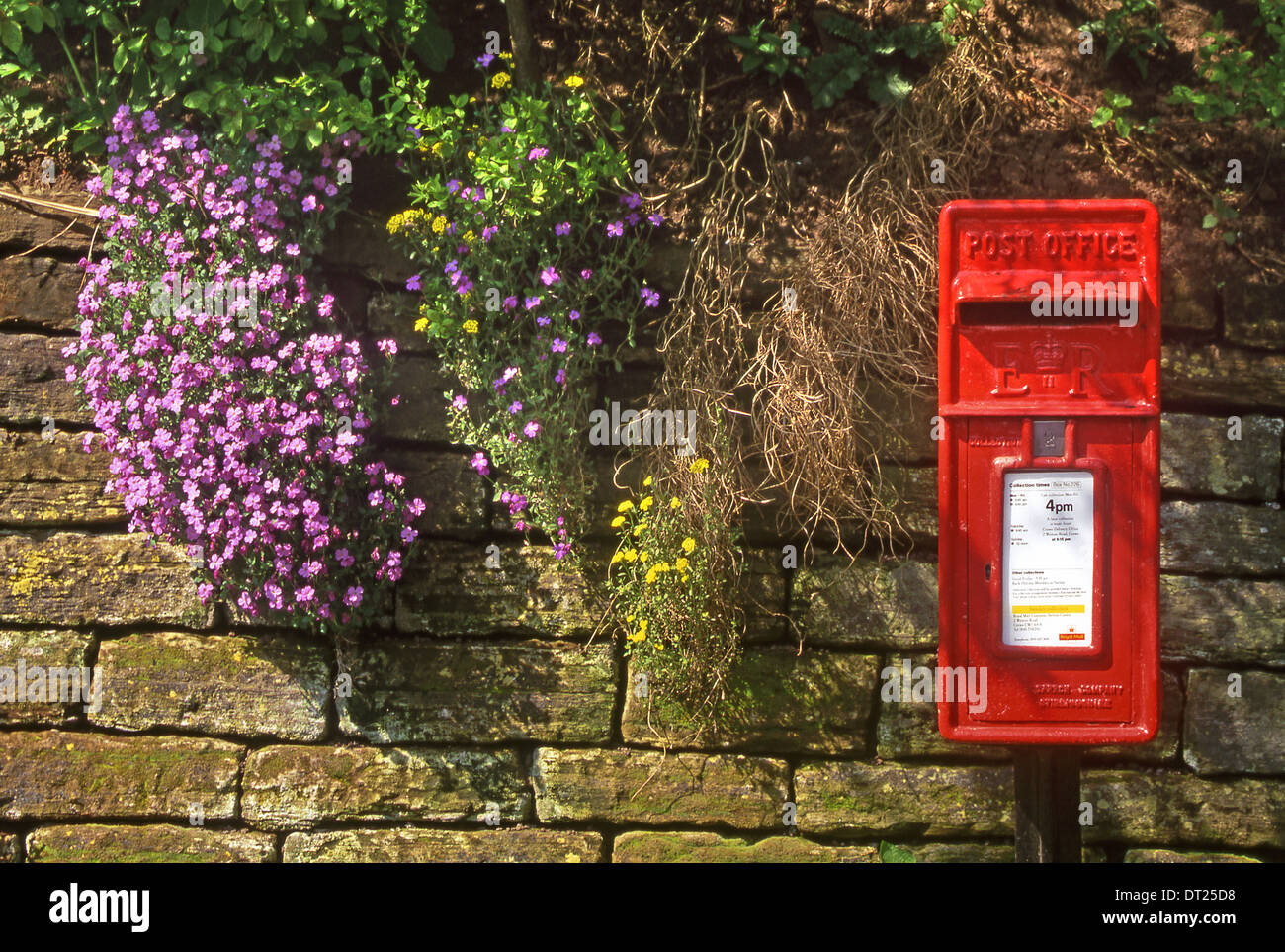 Bright Red British Post Box, in the Village of Eaton by Tarporley, Cheshire, England, UK - Stock Image